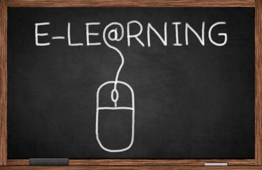 nivells de formació online